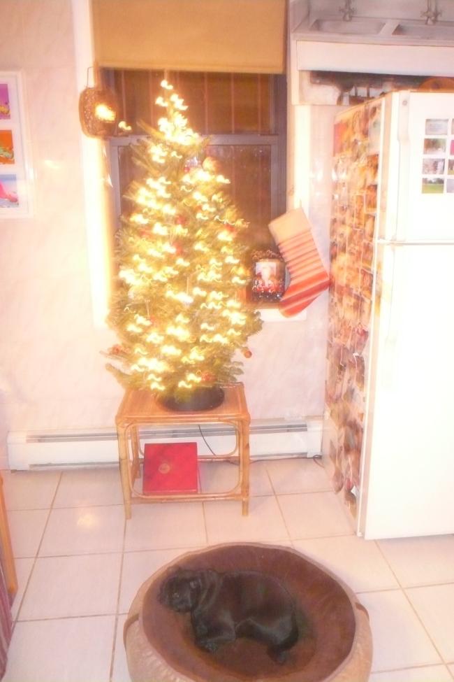 The_tree_2010
